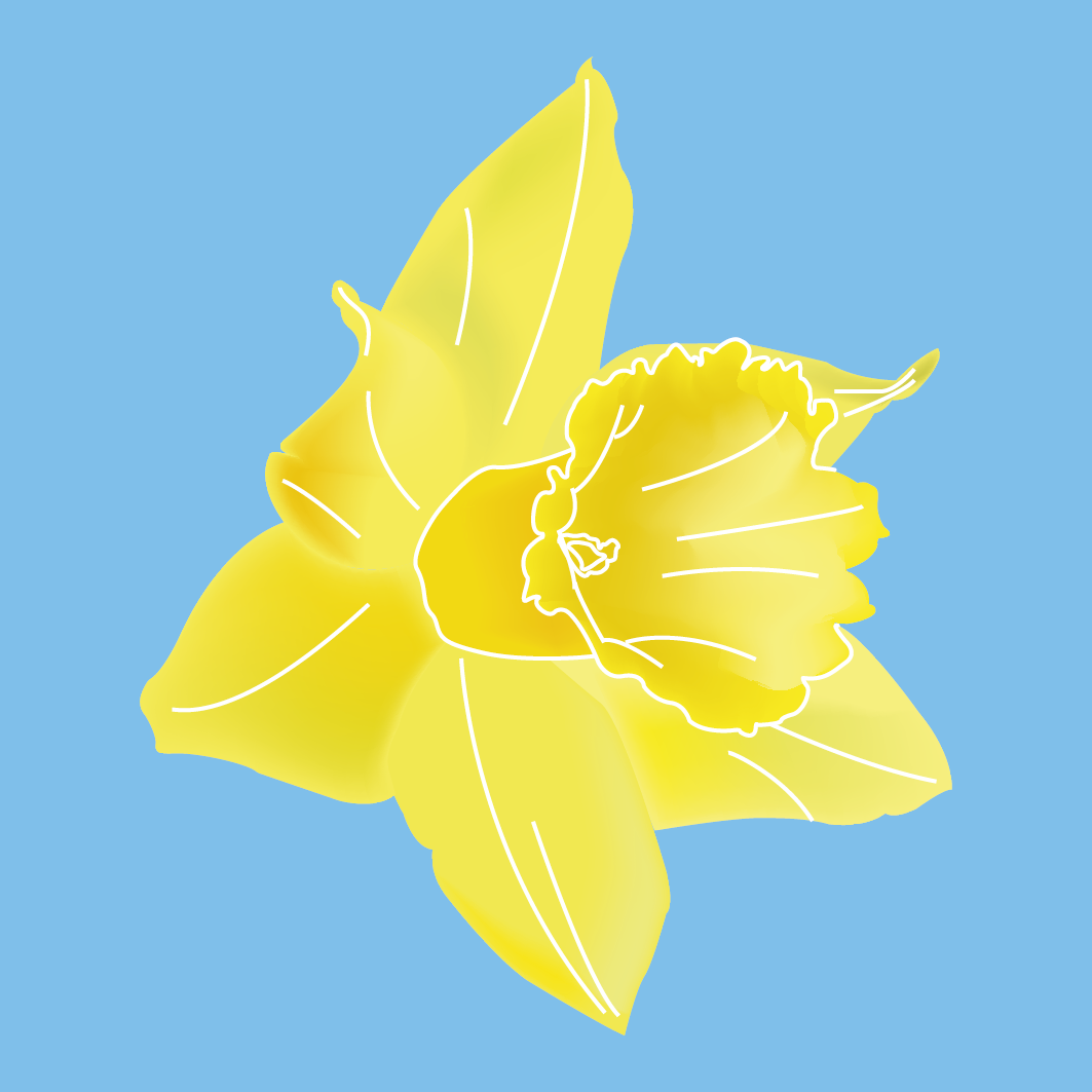 Daffodil Easter Themed Stickers