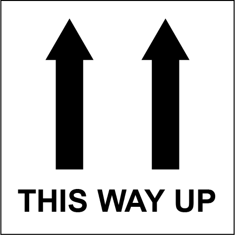 This Way Up 2 Rectangle Shipping Labels